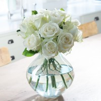 Simply 12 White Roses