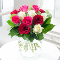 12 or 24 Mixed Roses