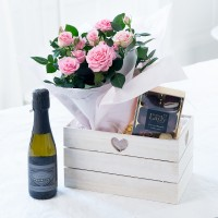 Pink Rose Plant Hamper