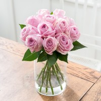 Simply 12 Pink Roses