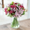 Luxury Mixed Alstroemeria