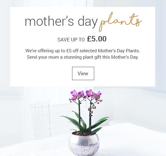 £5 off Mother's Day Plants